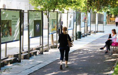 Dvě výstavy představují univerzitu v centru města